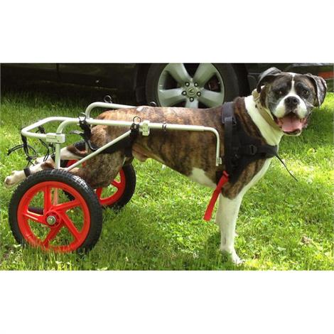 Best Friend Mobility Rear Support Dog Wheelchair,Large,Each,BFML