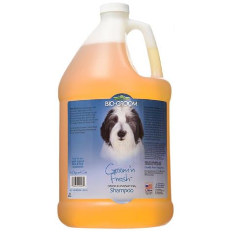 Bio Groom Groom N Fresh Shampoo,12 oz,Each,29012