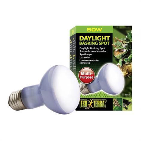 Exo-Terra Sun Glo Neodymium Basking Spot Lamps,50 Watts,Each,PT2131