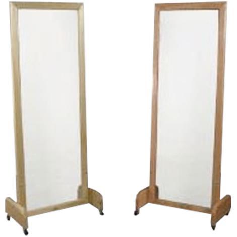 Dynatronics Posture Mirror,0,Each,0