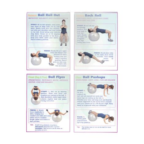 Flex Appeal Strength Training on Ball Poster,Training on Ball Poster,Each,FLE100