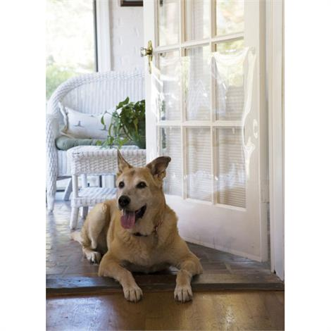 """Cardinal Gates Door Shield For Scratch Protection,33"""" x 35"""",Each,DRS"""