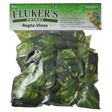 Flukers Pothos Repta-Vines,6 Long,Each,51015