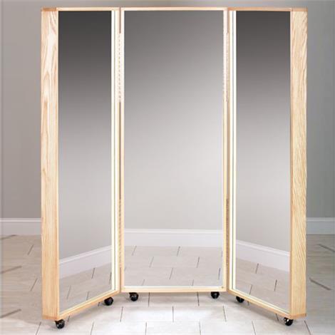 """Hausmann Glass Mirrors,Portable Single Panel,70""""H x 24""""W x 18""""D,Each,1671"""