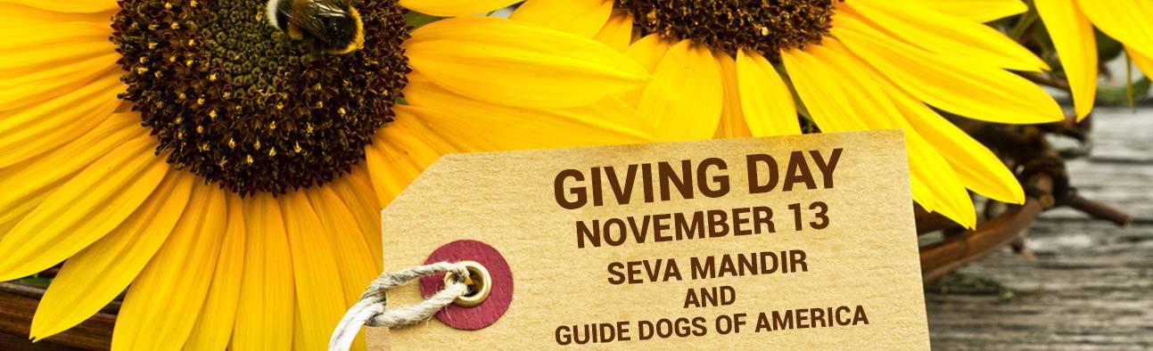 Giving Day - November 13 - Seva Mandir's