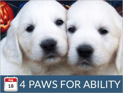 August 18, 4 Paws for Ability