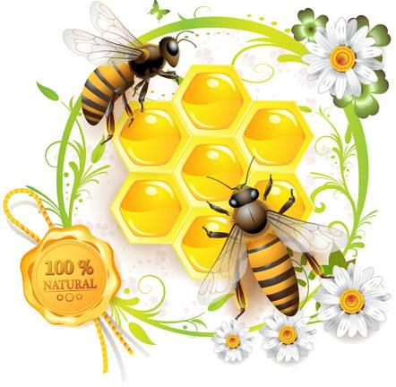 Medihoney & Its Benefits