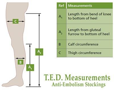 Kendall TED Sizing Guide