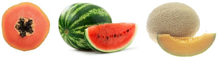 Watermelon, Papaya, and Cantaloupe
