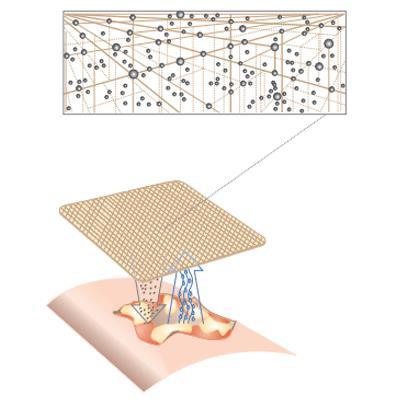 Silvasorb MicroLattice